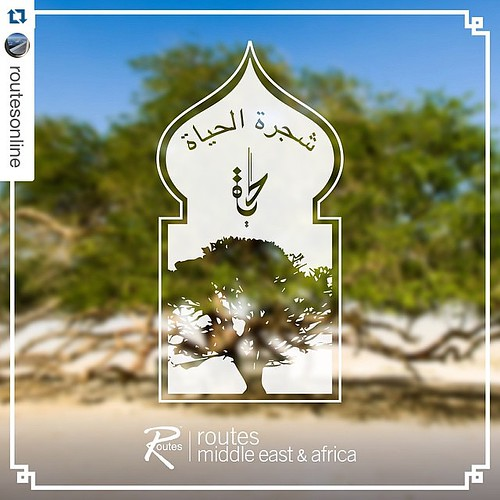 "#Repost @routesonline  9 days to go until ‪#‎RoutesMEA‬. The ""Tree of Life"" in Bahrain is the only major tree growing on top of a 25ft high sandy mound with no apparent source of water and other vegetation for miles around. It is approximately 400 years o"