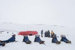 Svalbard 2016-488 (Cal Fraser) Tags: camp people snow max norway svalbard arctic sj sledge spitzbergen roberthill nickellis bobhill svalbardandjanmayen alfraser alistairfraser gregmaxted haavardkaarstad hvardkrstad