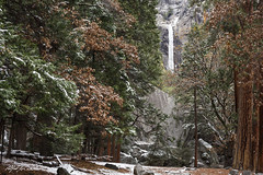 Lower Yosemite Falls In Winter - HFFF (Alfred J. Lockwood Photography) Tags: california morning winter yosemitefalls nature zeiss forest landscape waterfall nationalpark yosemite yosemitenationalpark yosemitevalley sierramountains alfredjlockwood