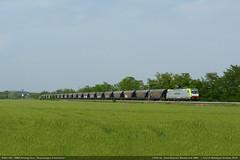 Cerealix (Simone Menegari) Tags: train merci rail verona transit mantova locomotive transito treno linea grano elettrico caorle 483 portogruaro cereali locomotore akiem tractio e483