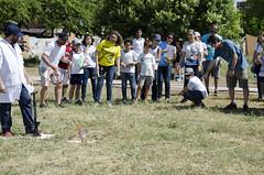2016_05_07_Amadeus_Foguetes_Sementeira_Foto_Saulo_Coelho (27) (Saulo Coelho Nunes) Tags: amadeus rocket foguete
