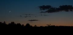 Dusk. 6.6.16 (koperajoe) Tags: blue sky orange moon silhouette clouds twilight dusk newengland crescent astronomy treeline waxing gloaming westernmass montaguema