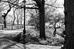 XT1-04-31-15-425-3 (a.cadore) Tags: nyc newyorkcity blackandwhite bw zeiss landscape uptown fujifilm riversidepark uws carlzeiss xt1 biogont2828 zeissbiogon28mmf28 fujifilmxt1