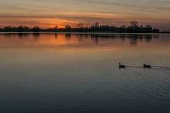 red pool (stevefge (away travelling)) Tags: light sunset water netherlands landscape nederland beuningen weurt grindgat nederlandvandaag reflectyourworld