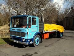 Leyland Super Comet, WKR 796J (miledorcha) Tags: robert truck four 1971 kent mark cab january super goods lancashire motors lorry restored british preserved heavy comet built leyland johnstone flatbed ayrshire 4x2 contractors haulage hgv rigid dalmellington blmc ergomatic o400 wkr796j