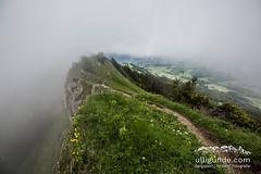Die Wolken schwappen ber den Grat. (ulligunde.com - Bergsport.Reisen.Fotografie) Tags: pfad nagelfluh nagelfluhkette nebel sturm allgu immenstadt sonthofen laufen running trail