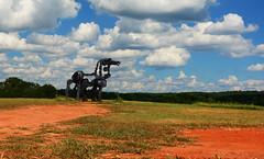 Iron Horse (davidwilliamreed) Tags: field art sculpture uga