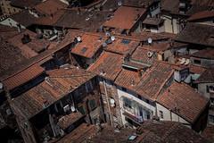 Rooftops (zia virgi) Tags: 2016 lucca viaggio