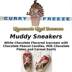 Homemade Hard Ice Cream Flavors (curryfreezeicecream) Tags: ice shop cream curry homemade freeze icecream cones flavors