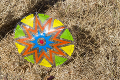 Day 240: Medallion (quinn.anya) Tags: medallion colorful orange green blue grass dry 525600minutes day240
