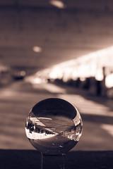 _MG_0283 (AdamFejes) Tags: glass globe glassglobe pointofview light sun summer blackandwhite bw colour city budapest danube sunset