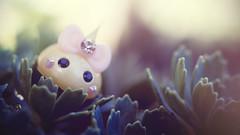 Mini Hoppe (Jam-Gloom) Tags: hoppechan cheekschan hoppe chan cheeks toy toyography toys gashapon gachapon minifigure toyphotography toysfromjapan toyfromjapan cutetoy cute cutetoys kawaii kawaiitoy kawaiitoys japanesetoy japanesetoys japanese