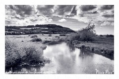 Colyford (flicspics) Tags: colyford devon southwest england uk greatbritain countryside country river nature clouds cloudporn sky skyporn tranquil peaceful calm blackandwhite blackandwhitephotography blackandwhitephoto monochrome water rural field outside outdoor wilderness bnw idyllic picturesque britishcountryside englishcountryside visitengland visitdevon mono scenic landscape