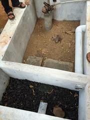 Filtration soak pit