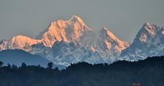Early morning glow on Mt. Pandim. (draskd) Tags: sunrise nikondigital himalayas sikkim gangtok kanchenjunga morningglow pandim eastsikkim mtpandim himalayanpeaks kanchenjungarange himalayanphotography sunriseonhimalayas