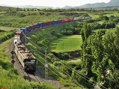 289 (firedmanager) Tags: train tren locomotive caf mitsubishi locomotora teco japonesas ferrocarril freighttrain renfe trena larioja briones 289 tándem 289105 renfemercancías