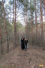 29. Nature walk / Прогулка в лес