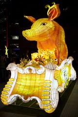 pig family (Val in Sydney) Tags: festival sydney vivid australia nsw australie