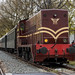SMMR 2225 met NVBS Koningsdagtrein, Oss Elzenburg
