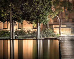 Evening Silence (Martin Snicer Photography) Tags: longexposure trees reflection water night 50mm artistic haunted 6d