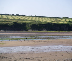 _1280733 (gwen paskins) Tags: ireland sea sky green rust silage wexford spade duncannon