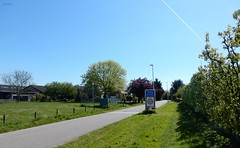 't Goy (bcbvisser13) Tags: road bomen nederland eu dorp weg huizen boerderij landweg struiken tgoy lantaarnpalen beplanting