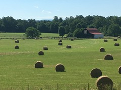 Late Spring Harvest (cliffordswoape) Tags: usa barn rural spring quilt quebec tennessee harvest peaceful sunny hills clear doyle hay bales whitecounty