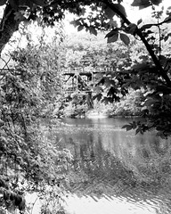 Trestle (joeldinda) Tags: railroad blackandwhite bw reflection tree monochrome nikon michigan may parks peremarquette co shadowplay pm grandriver lightandshadow v2 grandledge railbridge 2016 ledgestrail eatoncounty 3137 1v2 nikon1v2