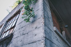 picasso (teereeos) Tags: street city urban downtown texas photographer tx houston explore concretejungle streetphotographer htx