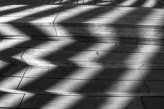 Madrid Rio Park (Juan R. Ruiz) Tags: madrid park city bridge parque bw espaa naturaleza blancoynegro nature canon river puente blackwhite spain europa europe capital perrault riomanzanares canon60d manzanaresriver canoneos60d eos60d madridrio dominiqperrault