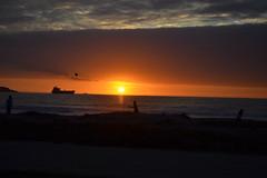 El ltimo cuadro (fepmk) Tags: coquimbo playa atardecer