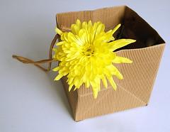 959 of 1096 (Yr 3) - Pretty (Hi, I'm Tim Large) Tags: yellow flower power basket packet card packaging bright 365 366 fuji fujinon fujifilm 1855mm xe1 xf