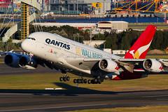 Qantas Airbus A380-842 VH-OQH (Mark Harris photography) Tags: qantas airbus yssy sydney canon 5d airplane plane