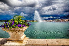 Jet d'Eau Fountain in Lake Geneva (George Oze) Tags: travel lake fountain horizontal architecture landscape switzerland colorful europe geneva outdoor swiss scenic sunny nobody landmark shore lakeshore daytime ch cloudysky jetdeau lakegeneva citiscape waterjet colorimage pottedflowers buildingexteriors giantwaterfountain symbolofgeneva