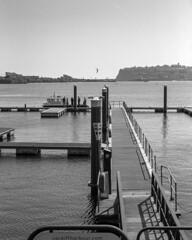 Harbour Patrol (--Kei--) Tags: mamiya rz67 rz67proii rz67professional 6x7 67 sekor mamiyasekor 127mm f35 mamiya127mmf35 mamiyasekor127mmf35 mediumformat film 120film blackwhite blackandwhite monochrome mono bw kodak d76 tmax tmax400 tmy2 400tmy2