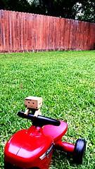 Make Your world the greener side of the street (karmenbizet73) Tags: art toys photography flickr toystory secretlifeoftoys greener eyespy danbo sunnysideofthestreet 146365 danboard photodevelopment danbolove makeyourworld toysunderthebed