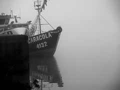 """""""Caracola"""" (Valdivia) (Calvipitecus) Tags: chile blackandwhite bw blancoynegro barco neblina valdivia rovaldivia calvipitecus fujifilmfinepixt350"""