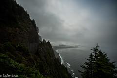 DSC_7361-1 (wandering indian) Tags: trees mountains beach oregon rocks coastline highway101