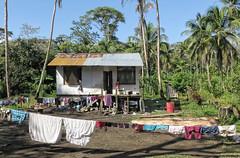 Jungle Hut (nfin10) Tags: boy costa canon rica powershot hut laundry jungle g16 nfin10