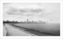 Chicago I (ximo rosell) Tags: city sky blackandwhite bw blancoynegro skyline architecture buildings illinois arquitectura nikon ciudad bn d750 eeuu lagomichigan ximorosell
