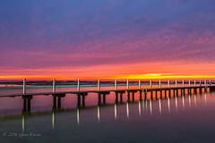 Narrabeen Sunrise (Gavin Everson) Tags: sunrise sydney nsw narrabeen rockpool narrabeenrockpool
