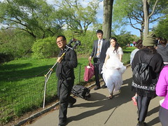 Groom and Bride Wedding Day photo shoot in the Bethesda Terrace and Fountain area of Central Park, New York City, Manhattan Island, USA (RYANISLAND) Tags: nyc newyorkcity pink flowers ny newyork flower japan japanese spring centralpark manhattan cherryblossom  sakura cherryblossoms newyorkstate matsuri japaneseculture nys springtime jpop sakuramatsuri  cherryblossomfestival centralparknyc manhattanisland japanday welcomespring japandaycentralpark peakbloom japandaynyc japanday2016