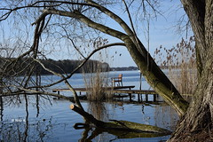 Time-out (heikecita) Tags: nature natur nikon d7200 wasser water outdoor heiter time out chair stuhl steg landing stage havel landscape landschaft fluss