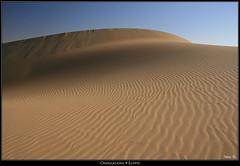 Ondulations (HimalAnda) Tags: sahara landscape sand desert dune curves egypt sable paysage vagues ridules egypte dsert courbes ondulations eos400d canoneos400d stphanebon