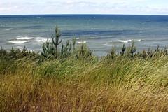 on a windy day (kexi) Tags: windy wind sea water waves baltic balticsea jastrzebiagora view grass horizon blue green pomorze pomerania polska poland polen polonia pologne canon june 2015 instantfave