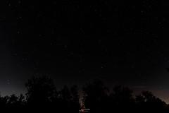 160811-07307 (Salvatore R. Cal) Tags: nikond7100 sigma1750 starphotography nigthsky night sky