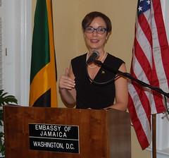 Diaspora Encouraged to Partner with Government