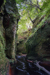 Finnich Glen (Ian D) Tags: fujixt2 finnichglen devilspulpit scotland burn stirlingshire water fuji fujifilm carnockburn