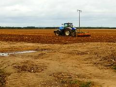 Maisfeld wird gepflgt (Sophia-Fatima) Tags: zarrentin mecklenburgvorpommern deutschland maisfeld traktor pflgen pflug feld field