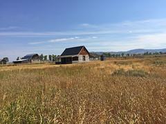 Mormon Row (bhotchkies) Tags: usa nationalpark teton grandteton